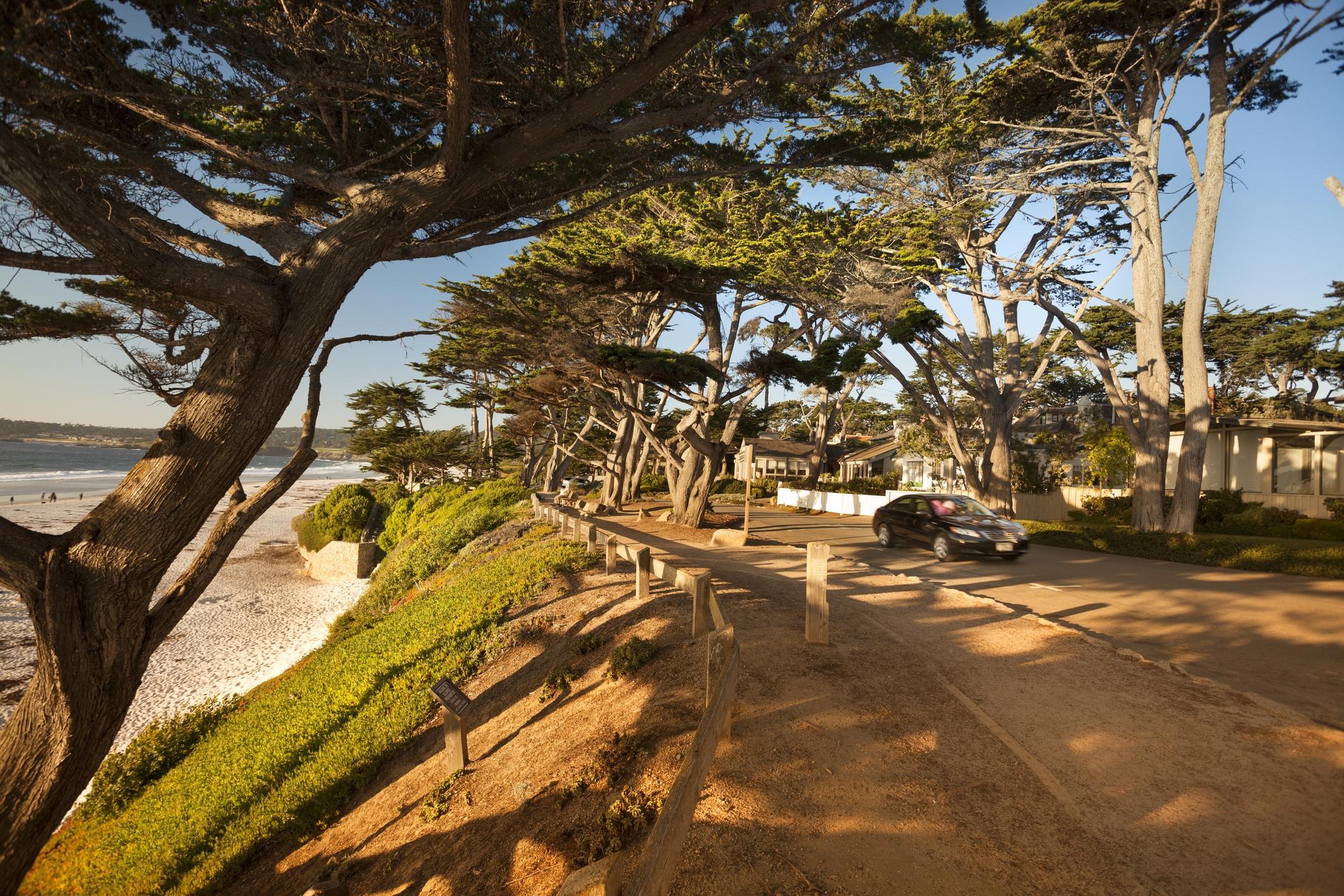 Cypress  Property Management Banner